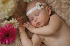 Bebé durmiente en las flores imagenes de archivo