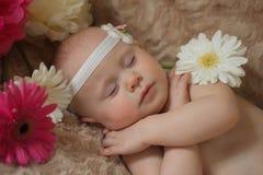 Bebé durmiente en las flores fotos de archivo libres de regalías