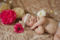 Bebé durmiente en las flores imagen de archivo libre de regalías
