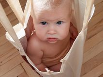 Bebé en bolso Fotos de archivo libres de regalías