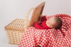 Bebé en cesta foto de archivo