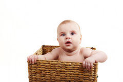 Bebé en el backet 1 Fotos de archivo libres de regalías