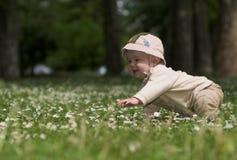 Bebé en el campo verde 4. Fotos de archivo libres de regalías
