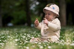Bebé en el campo verde 7. fotos de archivo