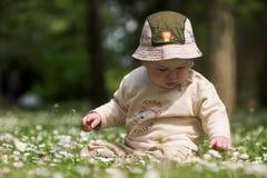 Bebé en el campo verde 9. Imágenes de archivo libres de regalías
