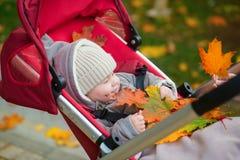 Bebé en el cochecito que juega con las hojas de otoño Fotos de archivo libres de regalías