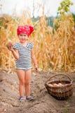 Bebé en el jardín con la cosecha de patatas en la cesta cerca del fondo seco del maíz del campo Niño sucio en rojo Imagen de archivo libre de regalías