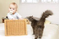 Bebé en el país con el gato Fotografía de archivo libre de regalías
