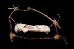 Bebé en hamaca Foto de archivo libre de regalías