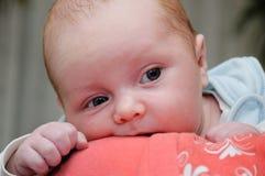Bebé en hombro de los mother´s Fotos de archivo libres de regalías