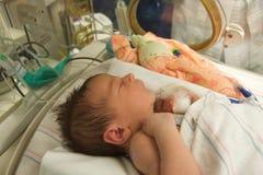 Bebé en incubadora Foto de archivo