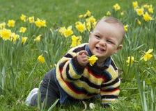 Bebé en narcisos Fotos de archivo libres de regalías