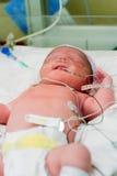 Bebé en NICU Fotografía de archivo libre de regalías