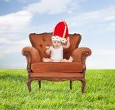 Bebé en sombrero real con la piruleta que se sienta en silla imagen de archivo libre de regalías