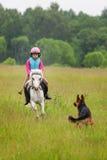Bebé en un caballo que galopa hacia ella y el perro al aire libre Foto de archivo