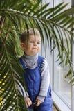 Bebé en un mono azul detrás de una palmera cerca de la ventana Foto de archivo