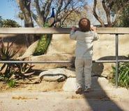 Bebé en un parque zoológico Fotografía de archivo libre de regalías