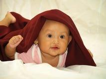 Bebé en velo rojo Fotos de archivo libres de regalías