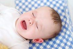 Bebé gritador de los seis-meses Fotografía de archivo libre de regalías