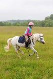 Bebé hermoso en un galope del caballo blanco Imagen de archivo