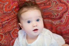 Bebé hermoso en un mantón rojo colorido del adorno del tulipán Foto de archivo