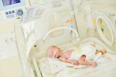 Bebé inocente recién nacido que duerme en una incubadora Fotografía de archivo libre de regalías