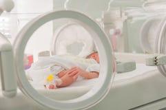 Bebé inocente recién nacido que duerme en una incubadora Fotografía de archivo