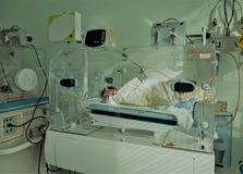 Bebé inocente recién nacido que duerme en una incubadora Imagenes de archivo