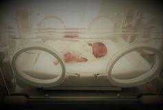 Bebé inocente recién nacido que duerme en una incubadora Imágenes de archivo libres de regalías