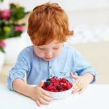 Bebé joven del niño del pelirrojo que prueba las frambuesas y las zarzamoras frescas y maduras Fotografía de archivo
