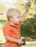 Bebé joven lindo con los conos del pino en el parque Imagen de archivo