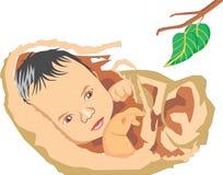 Bebé lindo Ilustración del Vector