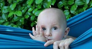 Bebé lindo adorable que se relaja en hamaca almacen de metraje de vídeo