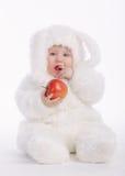 Bebé lindo con el traje del conejo Imagen de archivo libre de regalías