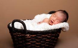 Bebé lindo dormido en cesta Foto de archivo