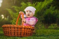 Bebé lindo en cesta en el parque verde imagenes de archivo