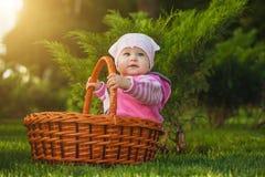 Bebé lindo en cesta en el parque verde fotografía de archivo libre de regalías