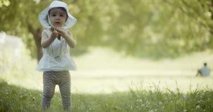 Bebé lindo que explora un parque a principios de verano almacen de metraje de vídeo