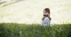 Bebé lindo que explora un parque a principios de verano metrajes