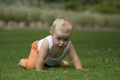 Bebé lindo que se arrastra en hierba Imagen de archivo libre de regalías