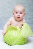 Bebé llevado de col Fotografía de archivo