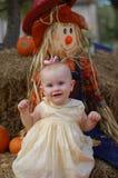Bebé na correcção de programa da abóbora Imagens de Stock Royalty Free