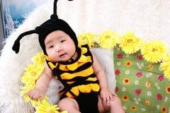Bebé nos girassóis Foto de Stock