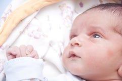 Bebé para arriba que mira Imagenes de archivo