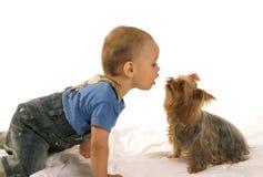 Bebé pequeno com yorkie Imagem de Stock Royalty Free