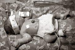 Bebé prematuro fotos de archivo