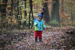 Bebé que camina a través del bosque del otoño fotos de archivo