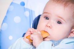 Bebé que come la galleta Imagenes de archivo