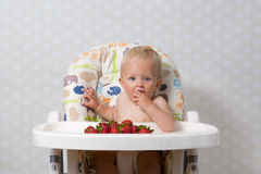 Bebé que come las fresas Foto de archivo