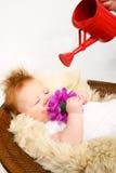 Bebé que es consolidado para crecer Foto de archivo libre de regalías